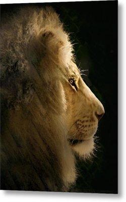 Lion Of Judah II Metal Print by Sharon Foster