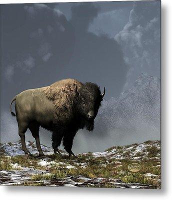 Lonely Bison Metal Print by Daniel Eskridge