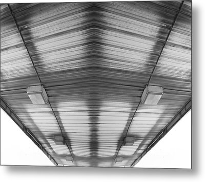 Metal Print featuring the photograph Looking Up by Maggy Marsh