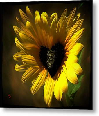 Love Sunflower Metal Print
