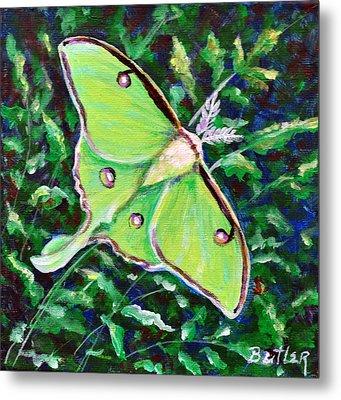 Luna Moth Metal Print by Gail Butler