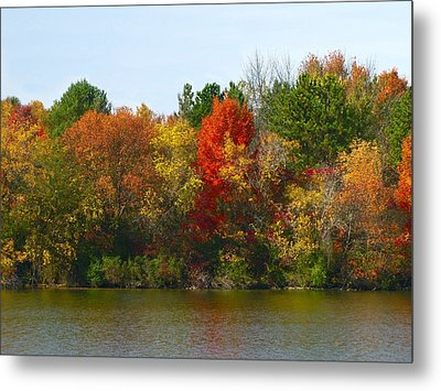 Michigan Fall Colors Metal Print