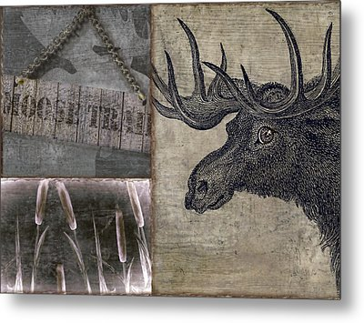 Moose Trail  Metal Print by Mindy Sommers