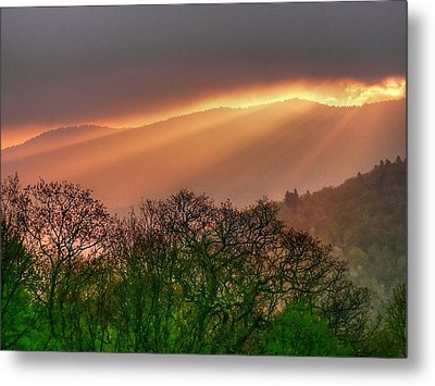 Metal Print featuring the photograph Morning Light by Doug McPherson