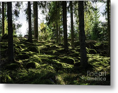 Metal Print featuring the photograph Mossy Rocks by Kennerth and Birgitta Kullman