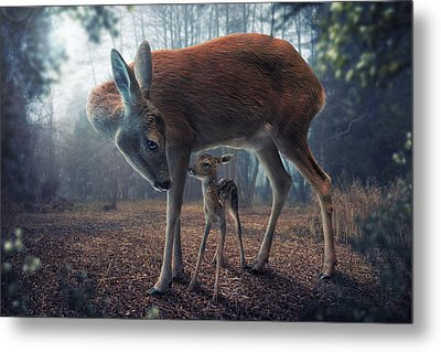 Mother And Fawn Metal Print by John Wilhelm