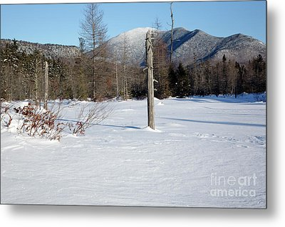 Mount Carrigain - White Mountains New Hampshire Usa Metal Print by Erin Paul Donovan