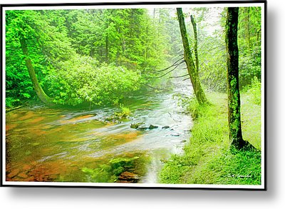 Mountain Stream, Pocono Mountains, Pennsylvania Metal Print by A Gurmankin