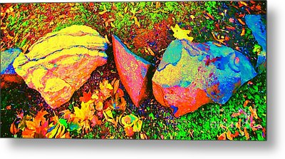 My Back Yard Rocks Metal Print by Ann Johndro-Collins