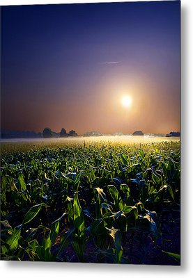 Mystic Metal Print by Phil Koch