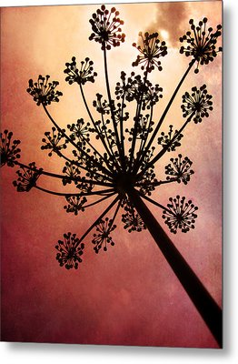 Nature's Fireworks Metal Print by Amy Tyler