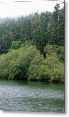 Navarro River Metal Print by Soli Deo Gloria Wilderness And Wildlife Photography