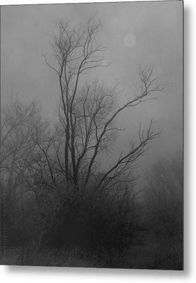 Nebelbild 13 - Fog Image 13 Metal Print by Mimulux patricia no No
