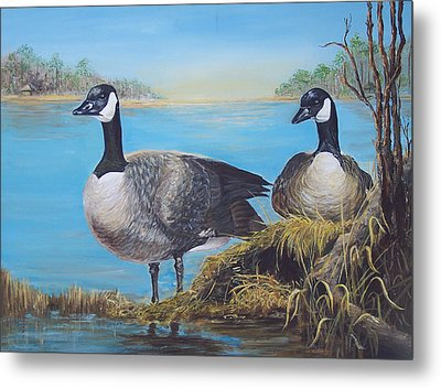 Nesting At Millsboro Pond Metal Print