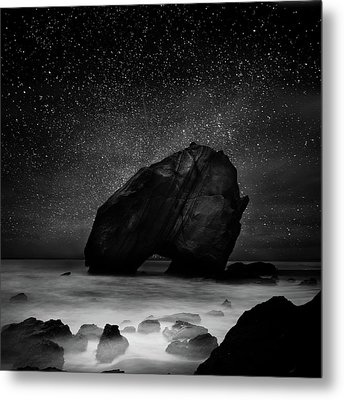 Metal Print featuring the photograph Night Guardian by Jorge Maia