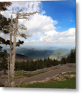 North Carolina High Country Metal Print by Joseph G Holland