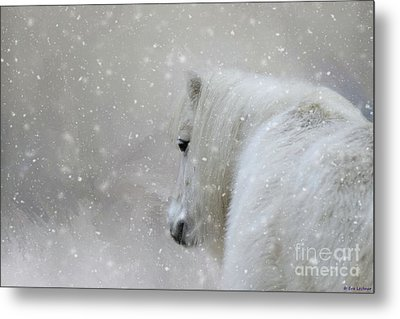 On A Cold Winter Day Metal Print