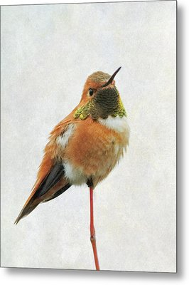 Metal Print featuring the photograph On Guard by Angie Vogel