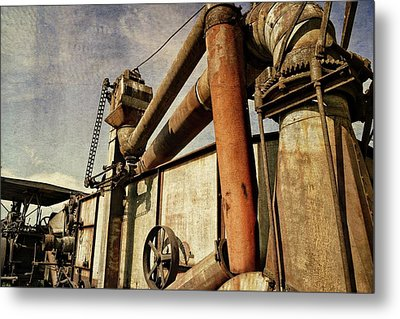 Metal Print featuring the photograph On The Farm by Michelle Calkins