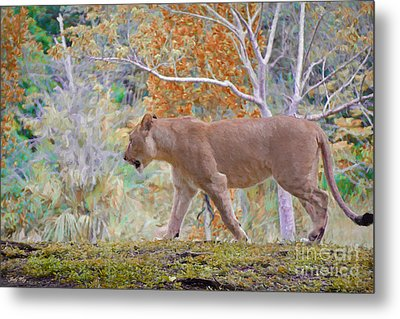 On The Move Metal Print by Judy Kay
