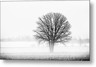 Metal Print featuring the photograph One... by Nina Stavlund