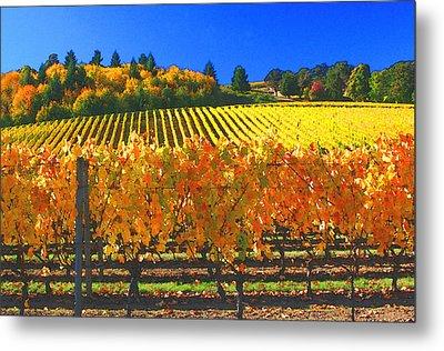 Oregon Wine Country Metal Print by Margaret Hood