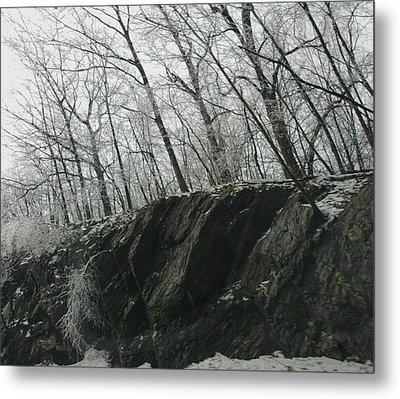 Metal Print featuring the photograph Out Of The Rocks by Ellen Levinson
