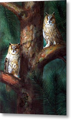 Owls In Moonlight Metal Print by Frank Wilson