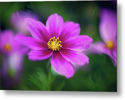 Painted Daisy Metal Print by June Marie Sobrito