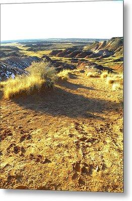 Painted Desert 2 Metal Print by Patricia Bigelow