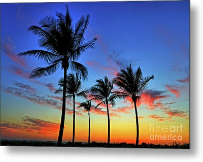 Metal Print featuring the photograph Palm Tree Skies by Scott Mahon