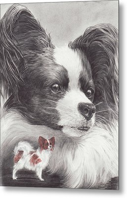 Papillon Metal Print by Laurie McGinley