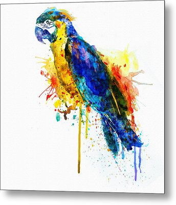 Parrot Watercolor  Metal Print by Marian Voicu