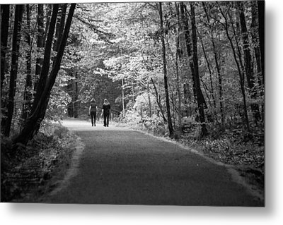 Path To Friendship Metal Print by Karol Livote