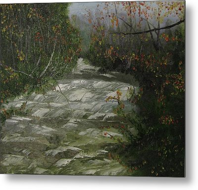 Peavine Creek Metal Print