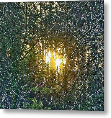 Photo Winter Solstice Dawn Metal Print by Ray  Petersen