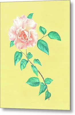 Metal Print featuring the painting Pink Rose by Elizabeth Lock