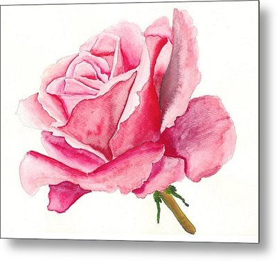 Pink Rose Metal Print by Robert Thomaston