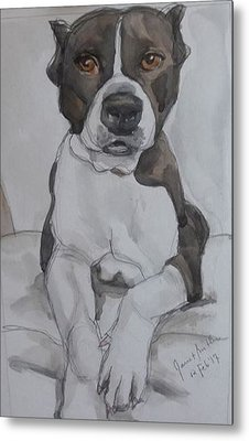 Pit Bull Metal Print by Janet Butler