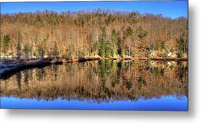 Metal Print featuring the photograph Pond Reflections by David Patterson