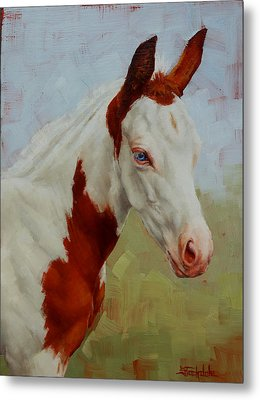 Pretty Baby-paint Foal Portrait Metal Print by Margaret Stockdale