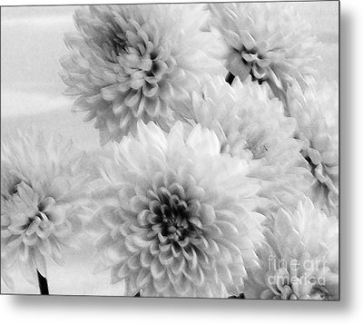 Pretty Petals Metal Print by Marsha Heiken