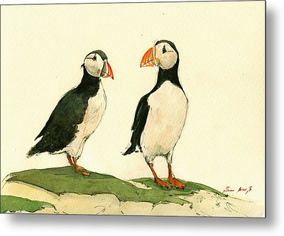 Puffins  Metal Print by Juan  Bosco