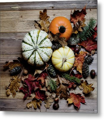 Metal Print featuring the photograph Pumpkins by Rebecca Cozart