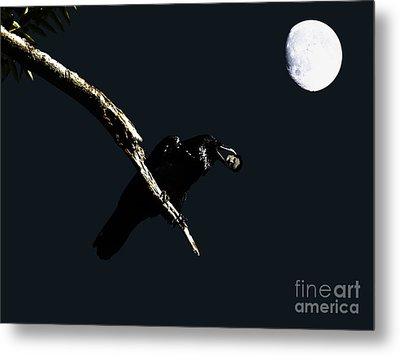Quoth The Raven Nevermore Metal Print by Wingsdomain Art and Photography