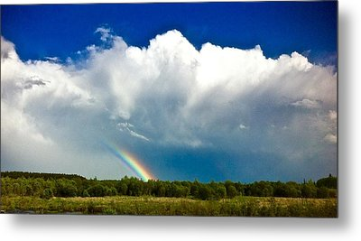 Rainbow  Metal Print by Brian Sereda