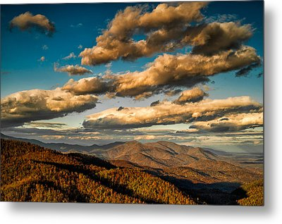 Metal Print featuring the photograph Reaching For The Light by Joye Ardyn Durham