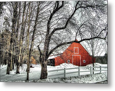 Red And White Metal Print by Betsy Zimmerli