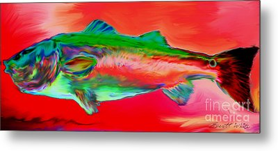 Red Drum Metal Print by Everett White
