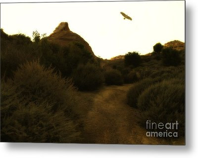 Red-tailed Hawk At Coyote Hills California . 7d11018 Metal Print by Wingsdomain Art and Photography